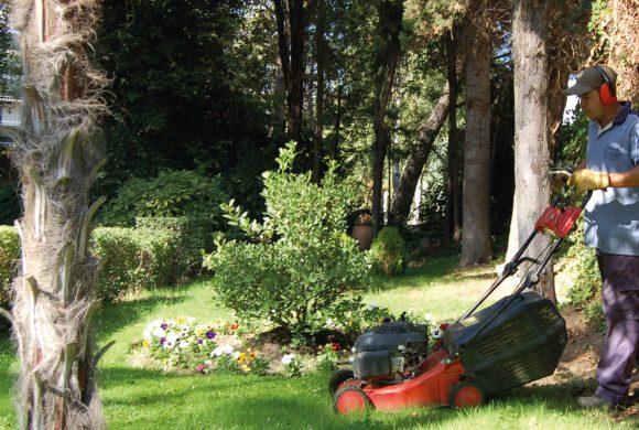 Jardinería Exteriores | Interiores