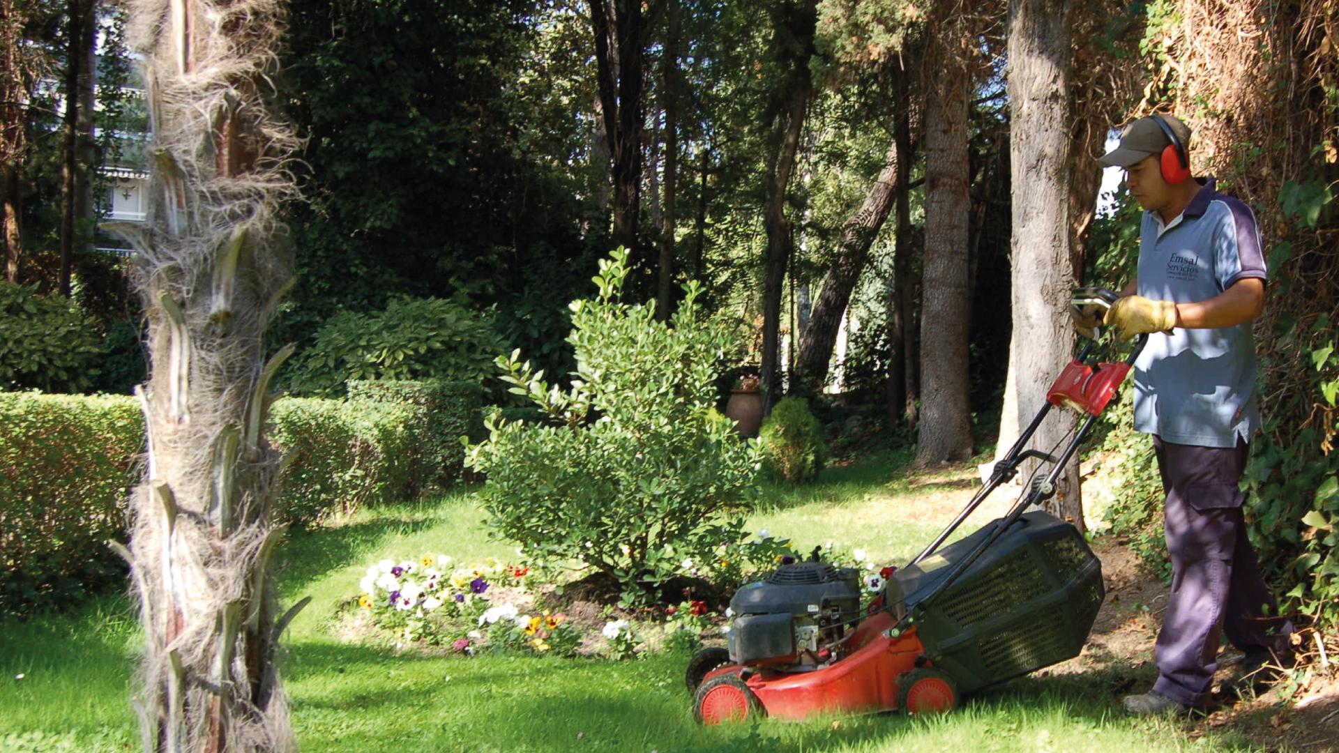 Servicios de jardiner a en madrid emsal - Trabajo de jardineria en madrid ...